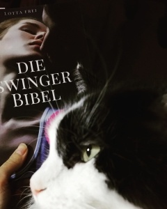 Mit der Katze über Swinger Club lesen